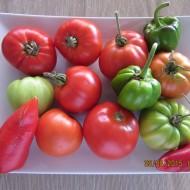 Summer's Best Tomato Bowl