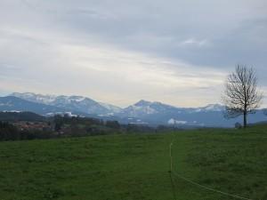 Alpen snow