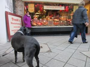 Suasage shop mit hunde