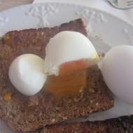 Electric Egg Cooker or Dan's Favorite Gadget