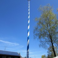 The Raising Of The Maibaum! A Little Slice Of Bavaria.